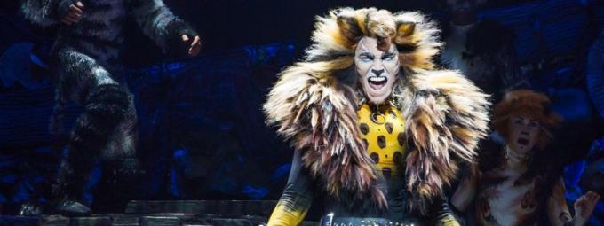 Cats [POSTPONED] at Rochester Auditorium Theatre